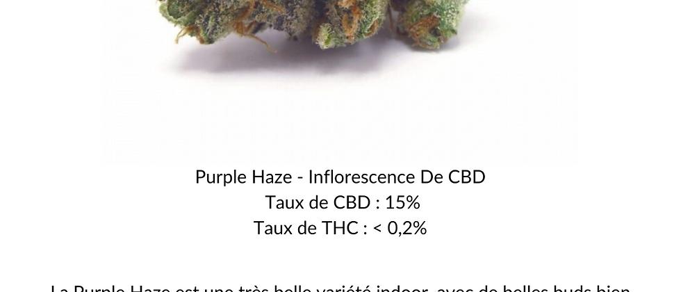 Purple Haze - Inflorescence de CBD (INDOOR)
