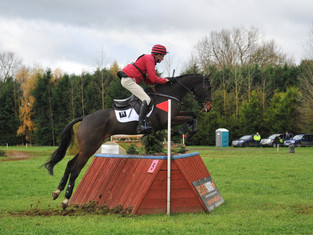 First Event of 2018 - Tweseldown Horse Trials