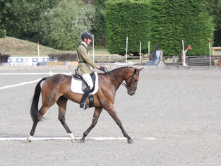 Dressage, Dressage and More Dressage...In the rain too!