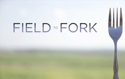 field-to-fork-poster
