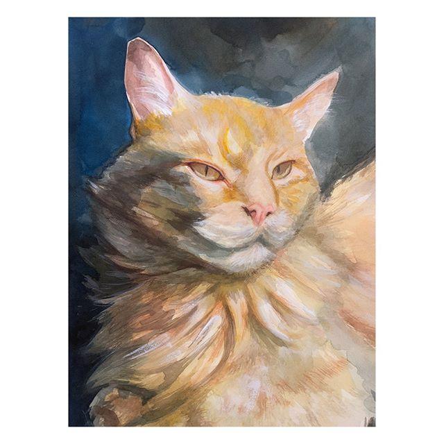 """""""Meow"""""""