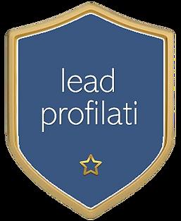 2_Leadprofilati_clipped_rev_1.png