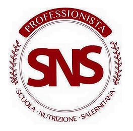 SNS Professionista logo.jpg