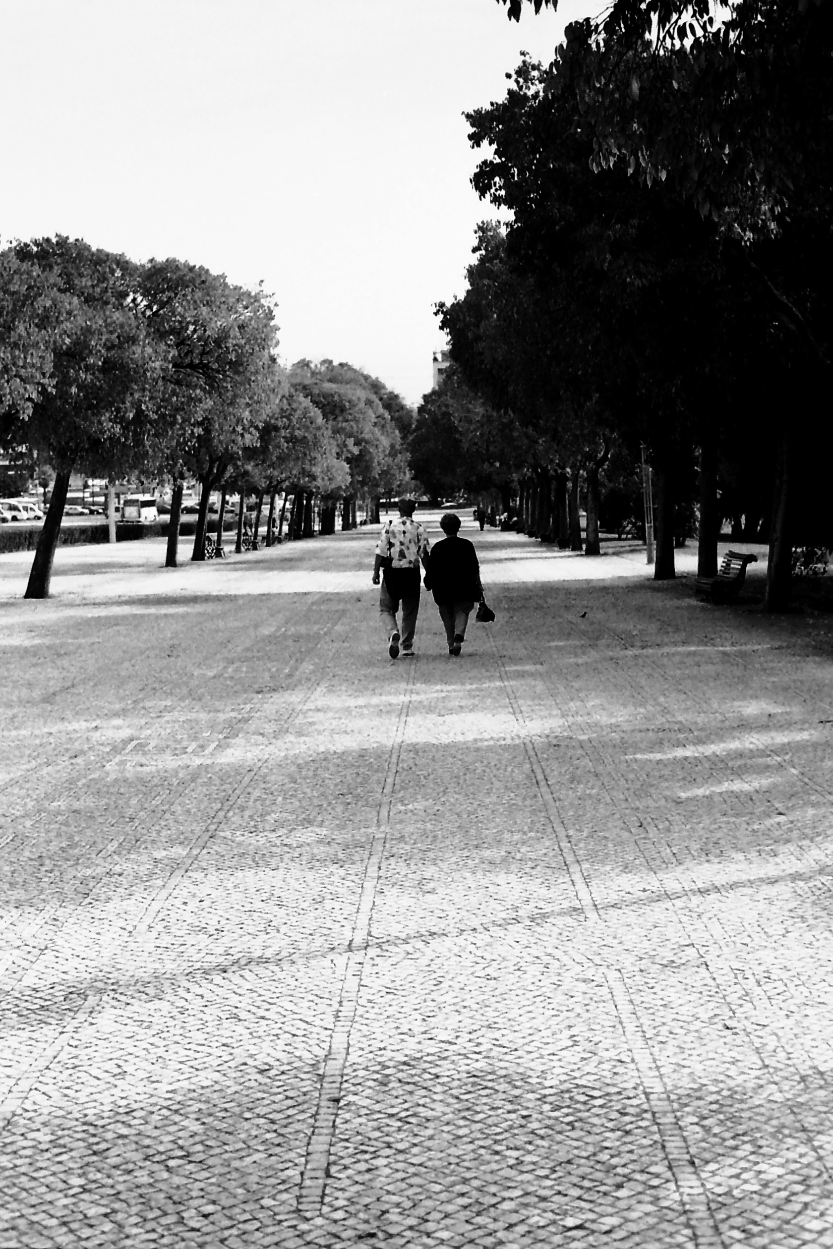 fotoquestra_0102.JPG