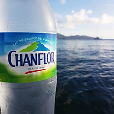 Chanflor 1L