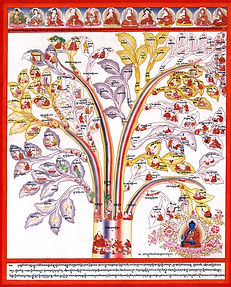 Tibetan Medicine Tree - Traditional Tibetan Medicine Text