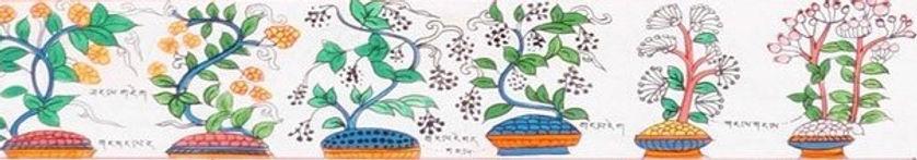 Tibetan Herbal Medicine & Acupuncture in Madison WI - Wisconsin