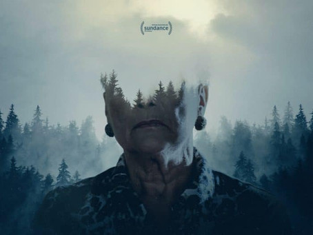 FILM REVIEW   MISHA AND THE WOLVES