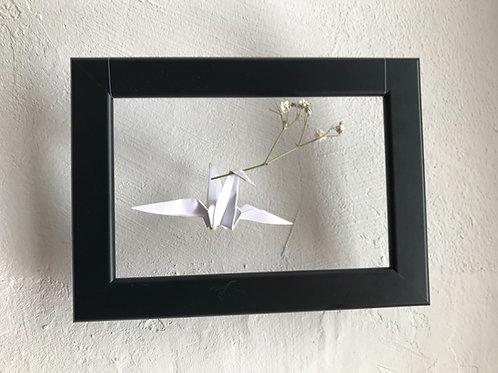 White bird in black frame
