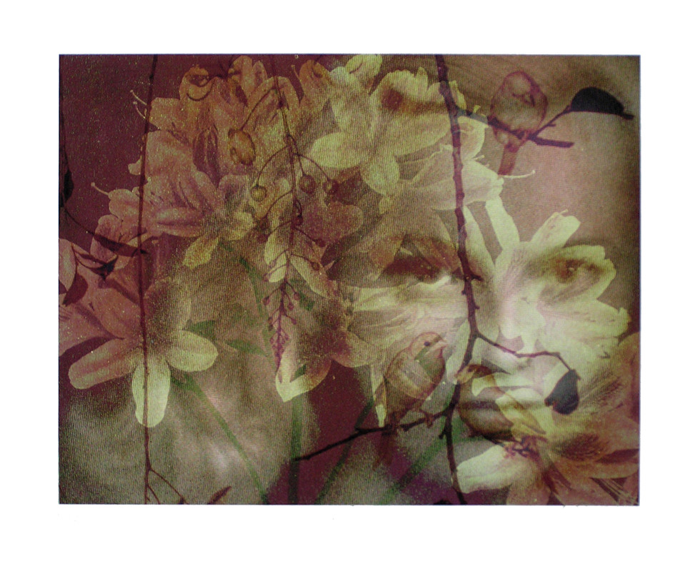 Jane Sampson 'Elf' Digital print for collaboration 'Freak of Nature' International art exchange Curated by Rona Green.