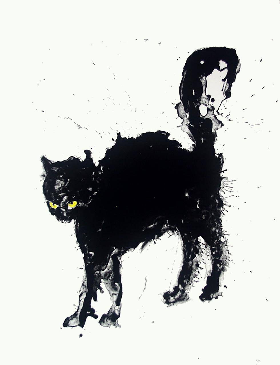 Jane Sampson 'Black Cat' Silkscreen Personal Project 56 x 76cm Edn 20