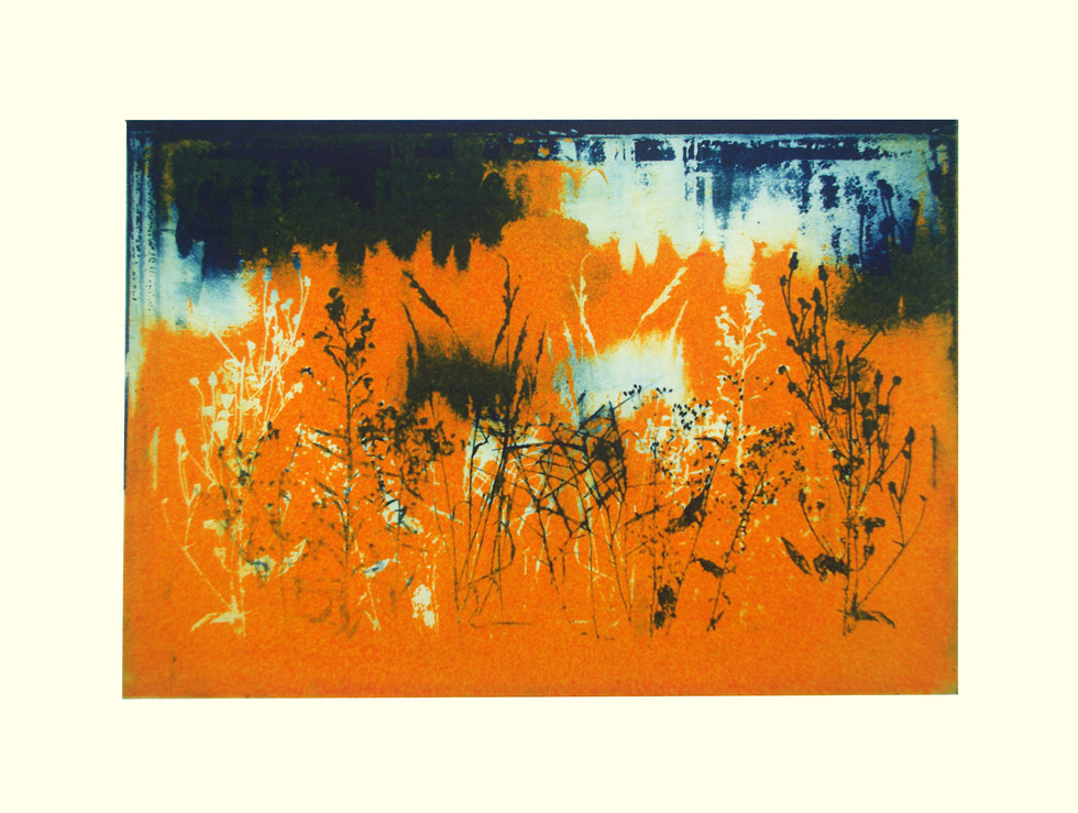 Jane Sampson 'After the Deluge' Photo etching' 30 x 21 A /P