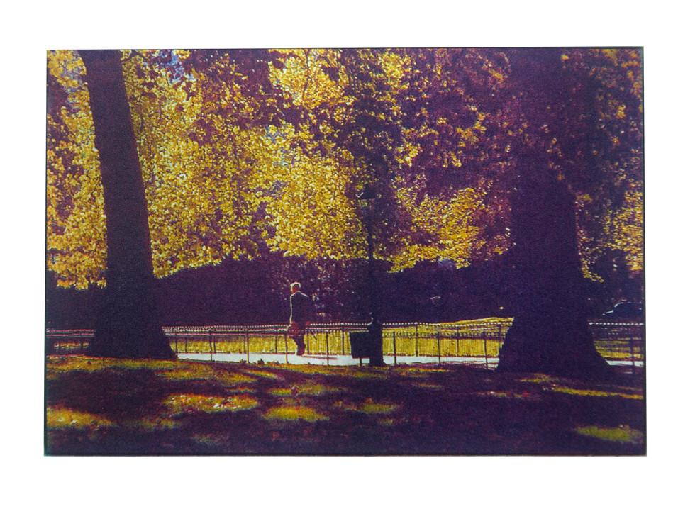 Jane Sampson 'Park' Photo etching  15 x 21cm A/P