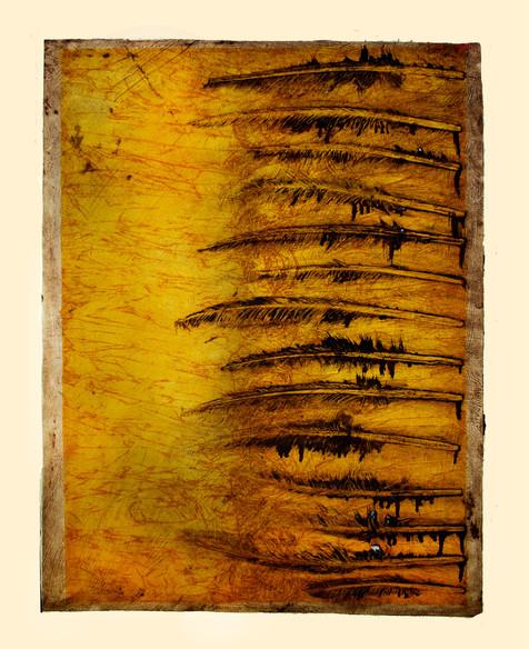 Jane Sampson 'Feathers' Collagraph 56 x 76cm edn 10