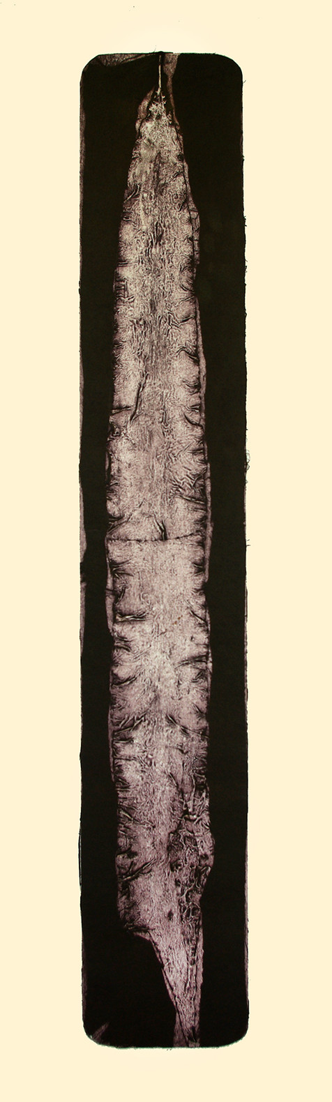 Jane Sampson 'Seaweed' Collagraph 38 x 1120cm edn. 10