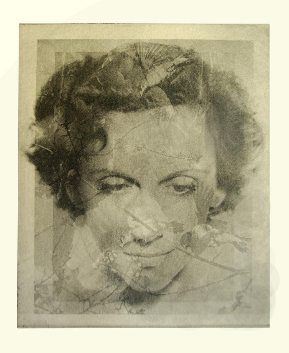 Jane Sampson 'Angel' Photo etching  15 x 20cm Edn 20