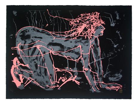 Jane Sampson 'Pink Splash' Screenprint 76 x 56cm Edn 20