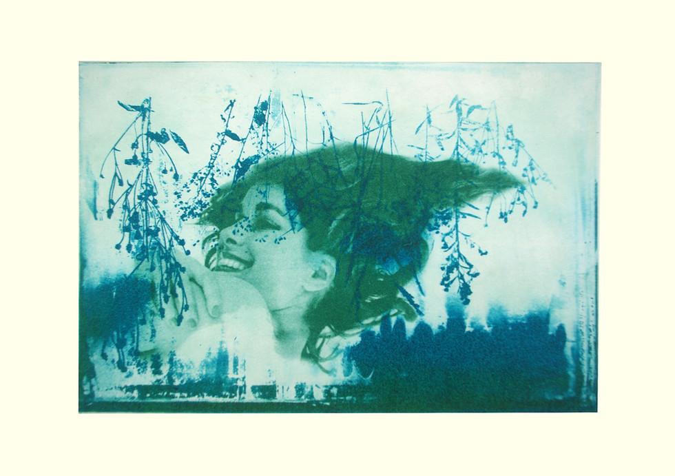 Jane Sampson 'Green Spring' Photo etching 30 x 21cm Edn 20