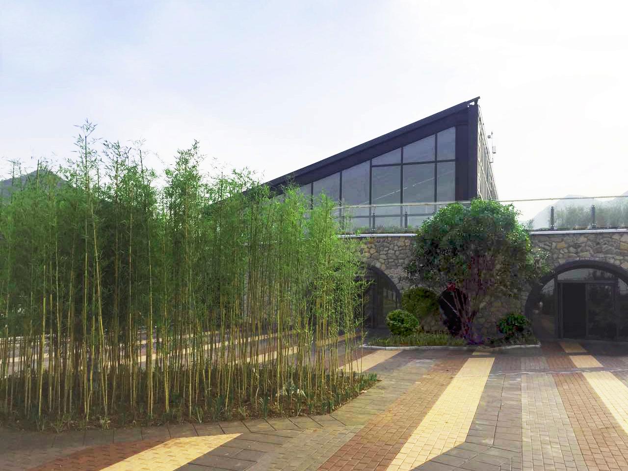 Zhangwu Tourist Centre (2003)