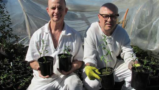 TDC Ellis - Lee College Horticulture Students