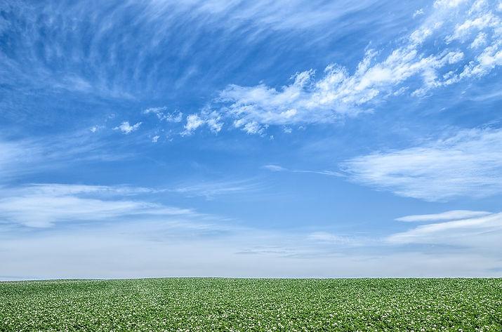 blue-sky-1348634_960_720.jpg
