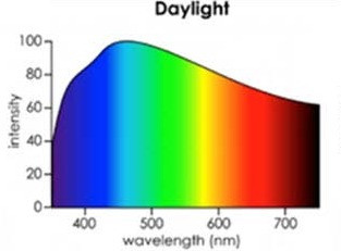 What Are the Dangers of High Energy Blue Light?