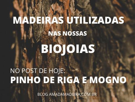 Madeiras utilizadas nas nossas biojoias: Pinho de Riga e Mogno