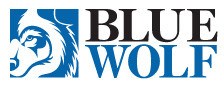 Blue Wolf acquires EPP assets