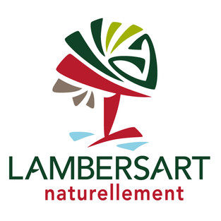 Logo-Ville-de-Lambersart.jpg