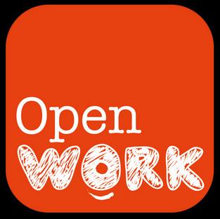 Animation d'un atelier networking