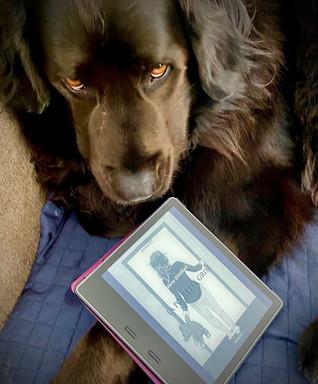 """Notre Blanche qui veut lire """"La poulette grise"""" sur Kindle"""