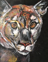 Florida Panther