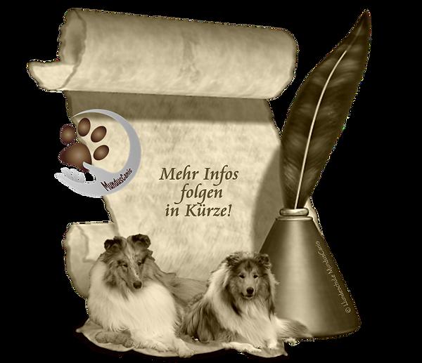 MundusCanis - Hundeplatz