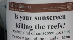 Toxic Sunscreen Kills Coral Reefs