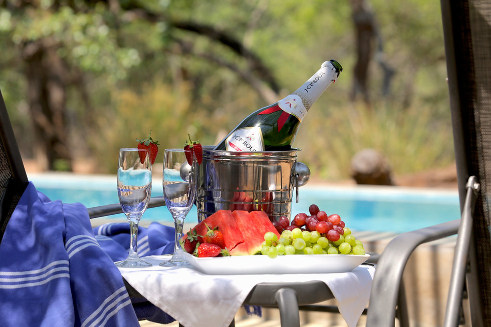 Tusk_Bush_Lodge_champagne.JPG