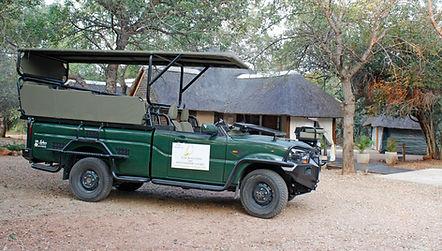 Kruger-Safari.jpg