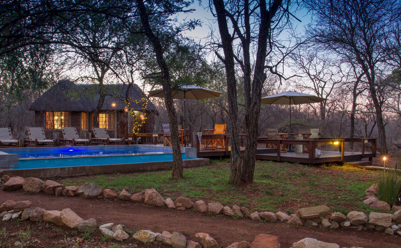 Tusk Bush Lodge pool area