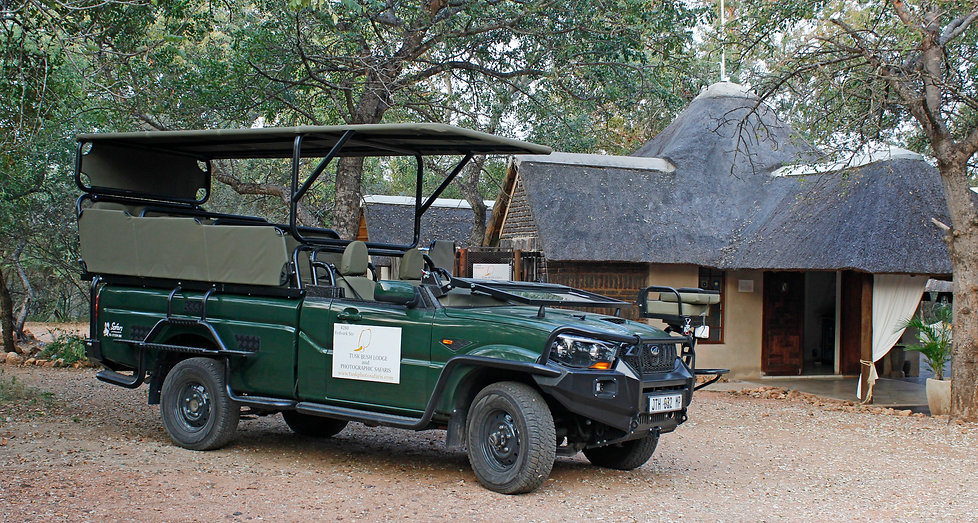 Tusk-Bush-Lodge-Safari.jpg