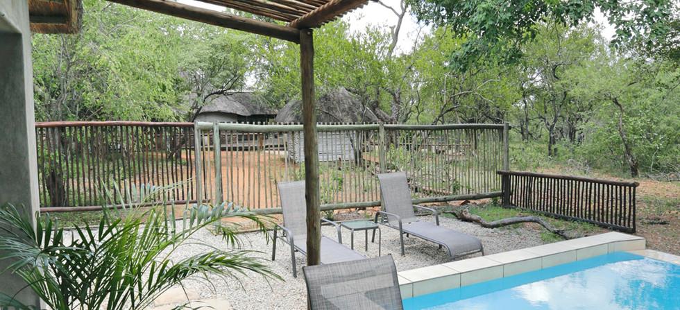 Rhino Bungalow 4 Pool