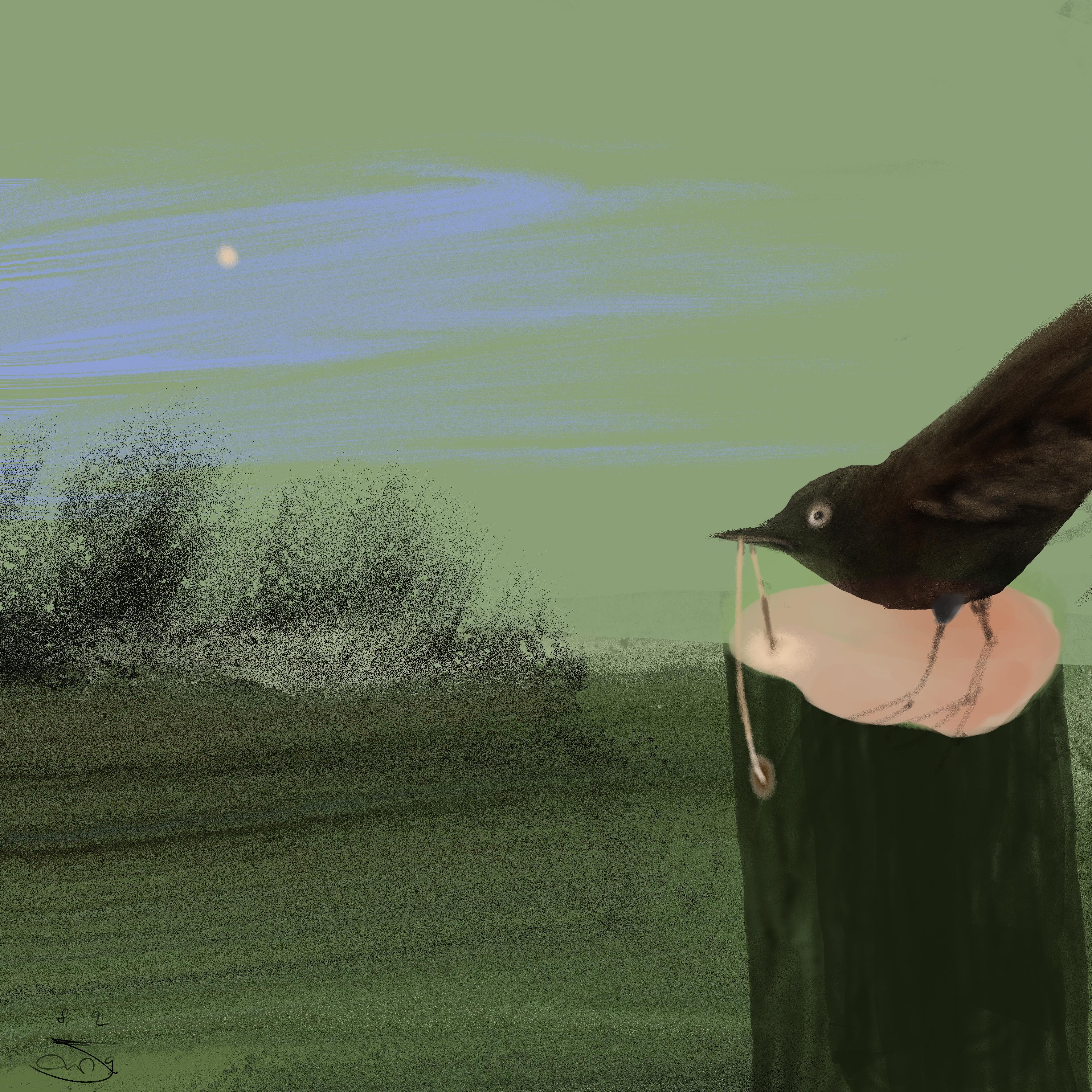Gehannes met een Houtworm