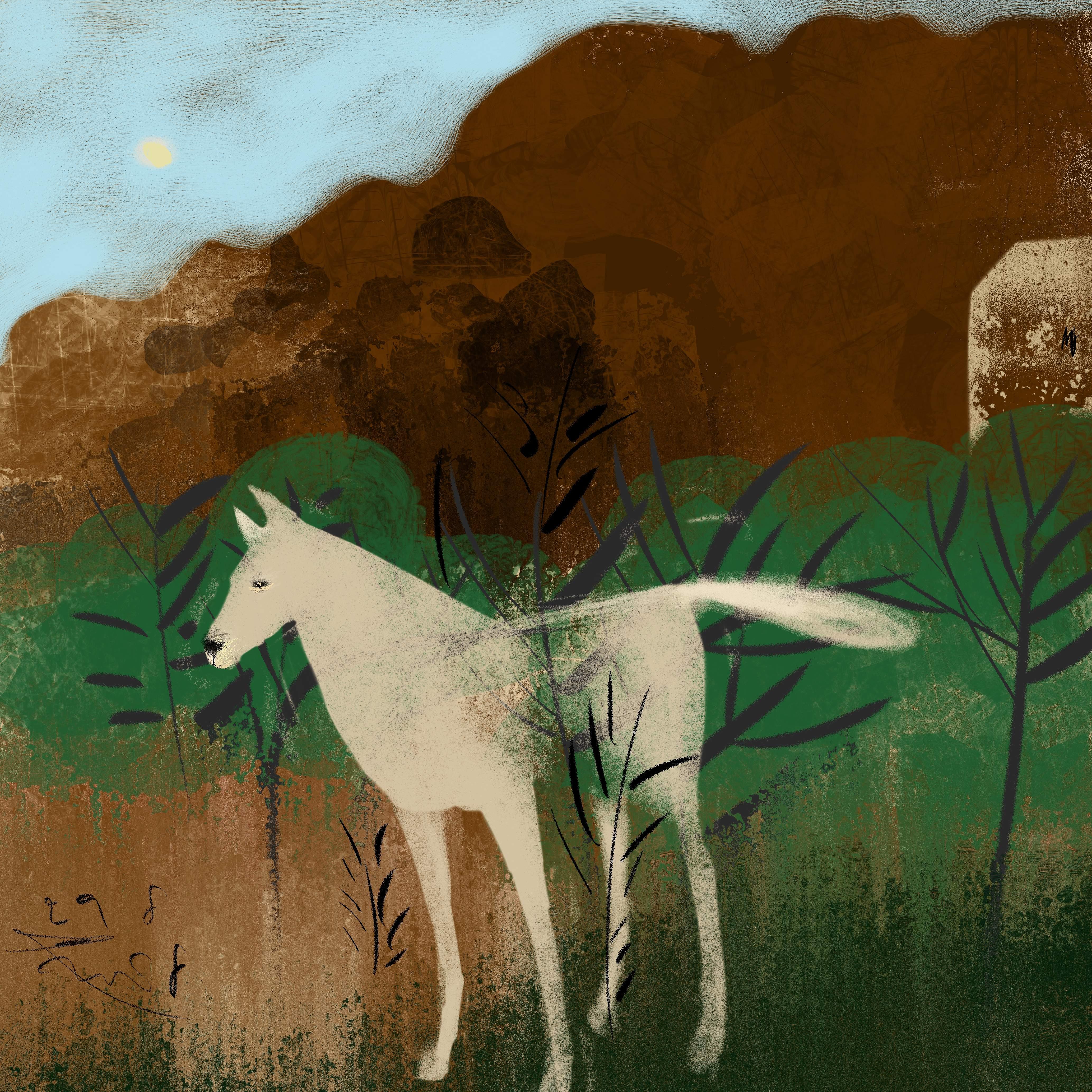 Witte Herder