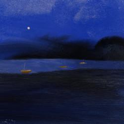 Nachtvissers