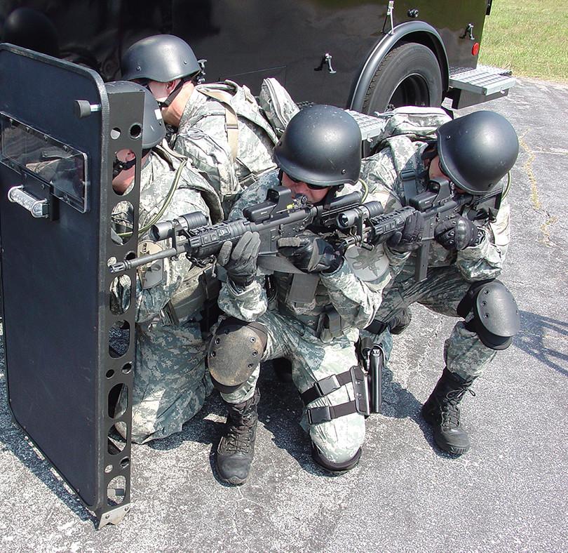 Ladder Shield (7).jpg
