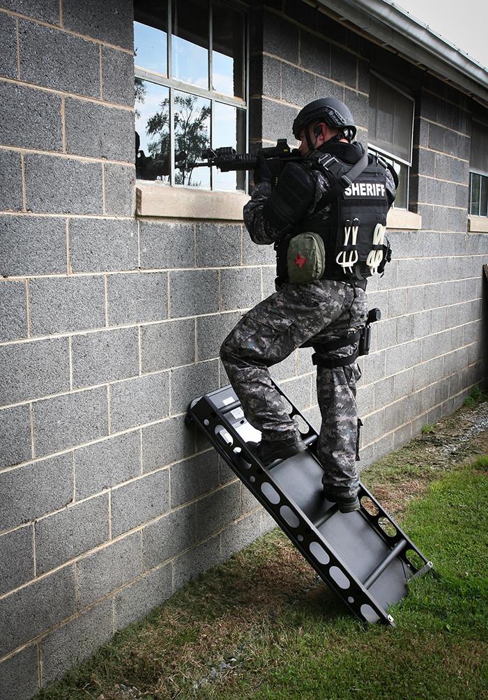 Ladder Shield 2.jpg