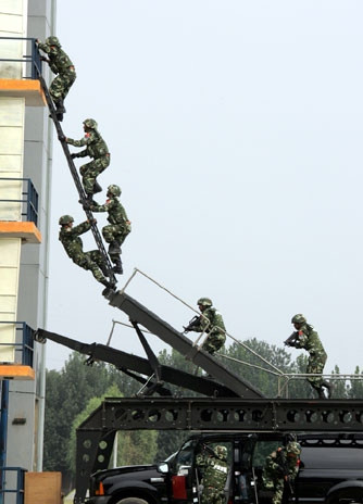1 Tactical Ladder System 1.jpg