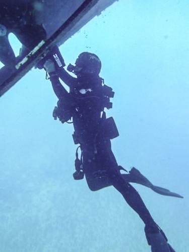 Diver-9-576x1024.jpg