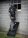 Ladder Shield 3.jpg