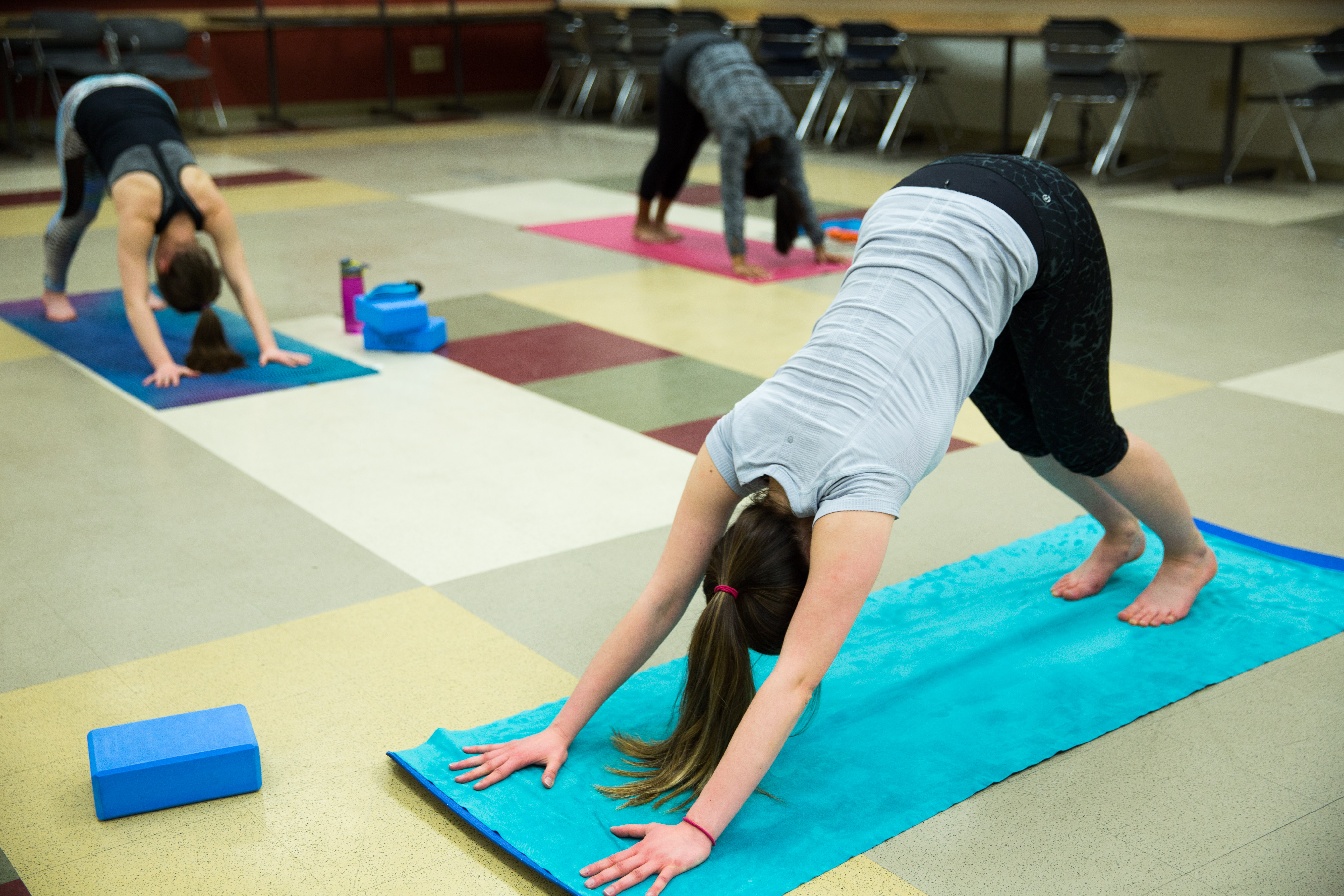 Yoga EngArtShow Spark-6213