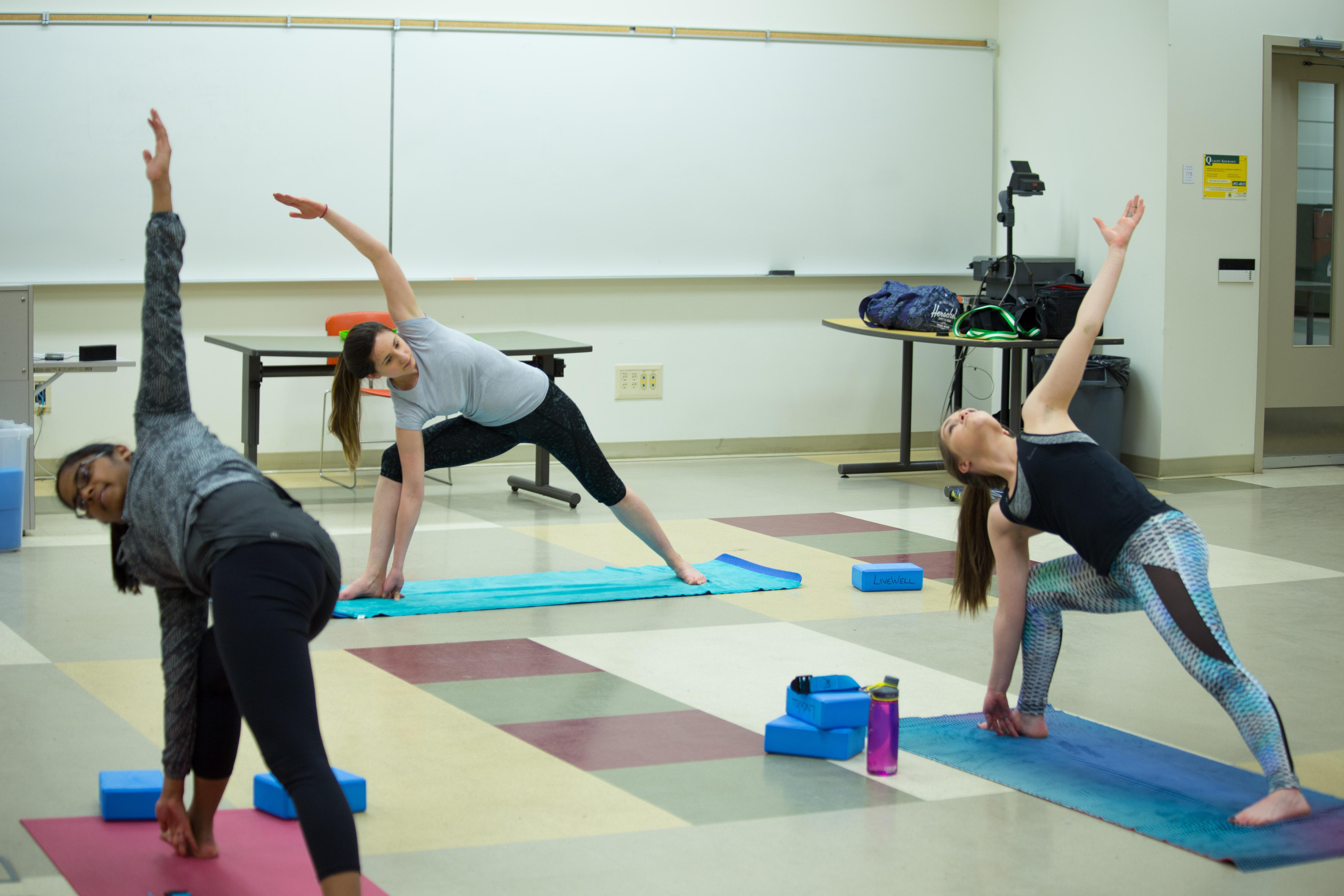 Yoga EngArtShow Spark-6187