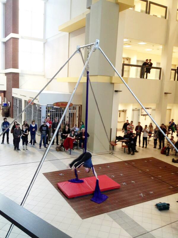 Else - Firefly Theatre and Circus Aerial Arts Program